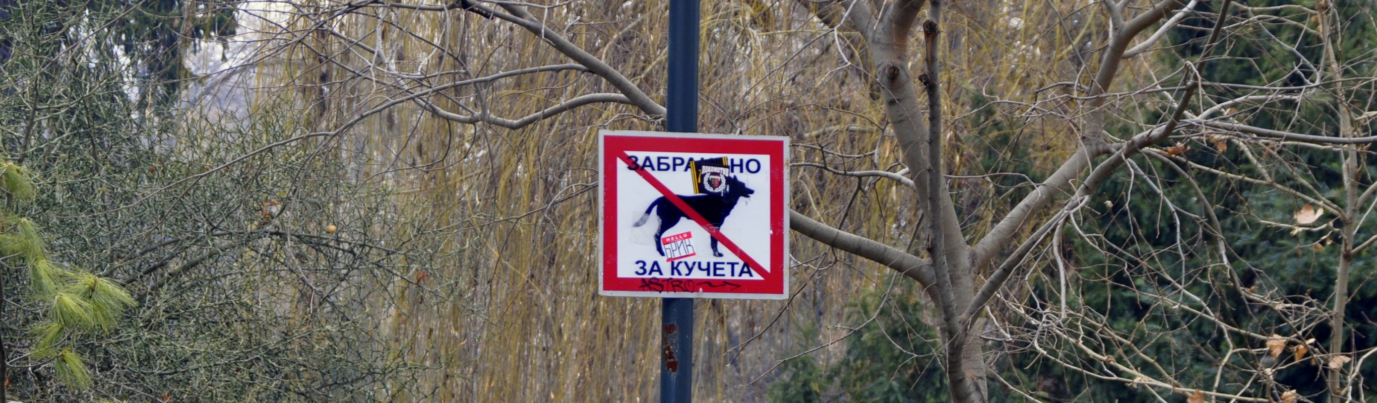 5 things that are forbidden in Plovdiv
