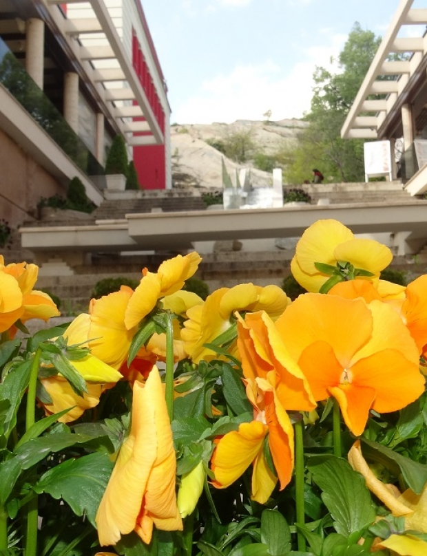 Colorful Plovdiv (photo gallery)
