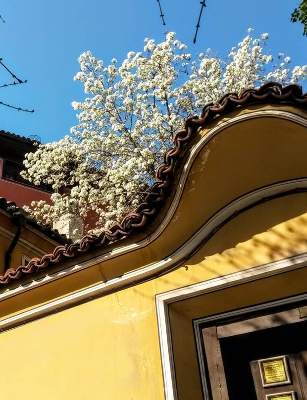 What to do in Plovdiv during the weekend  (13-15.04)