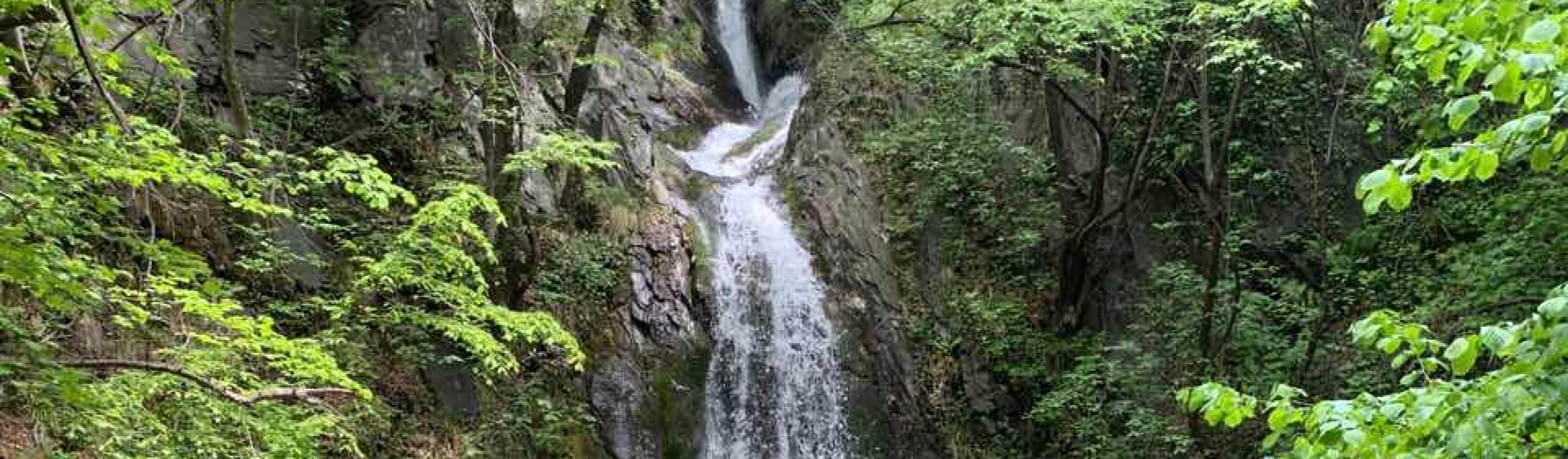 A trip to the Sopot Falls with Lost in Plovdiv