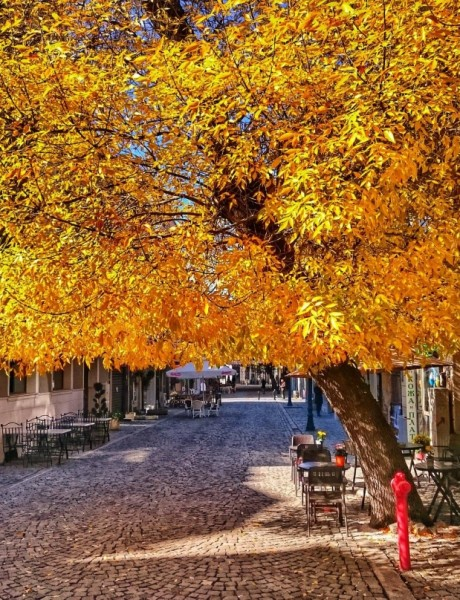 What to do in Plovdiv in the autumn?
